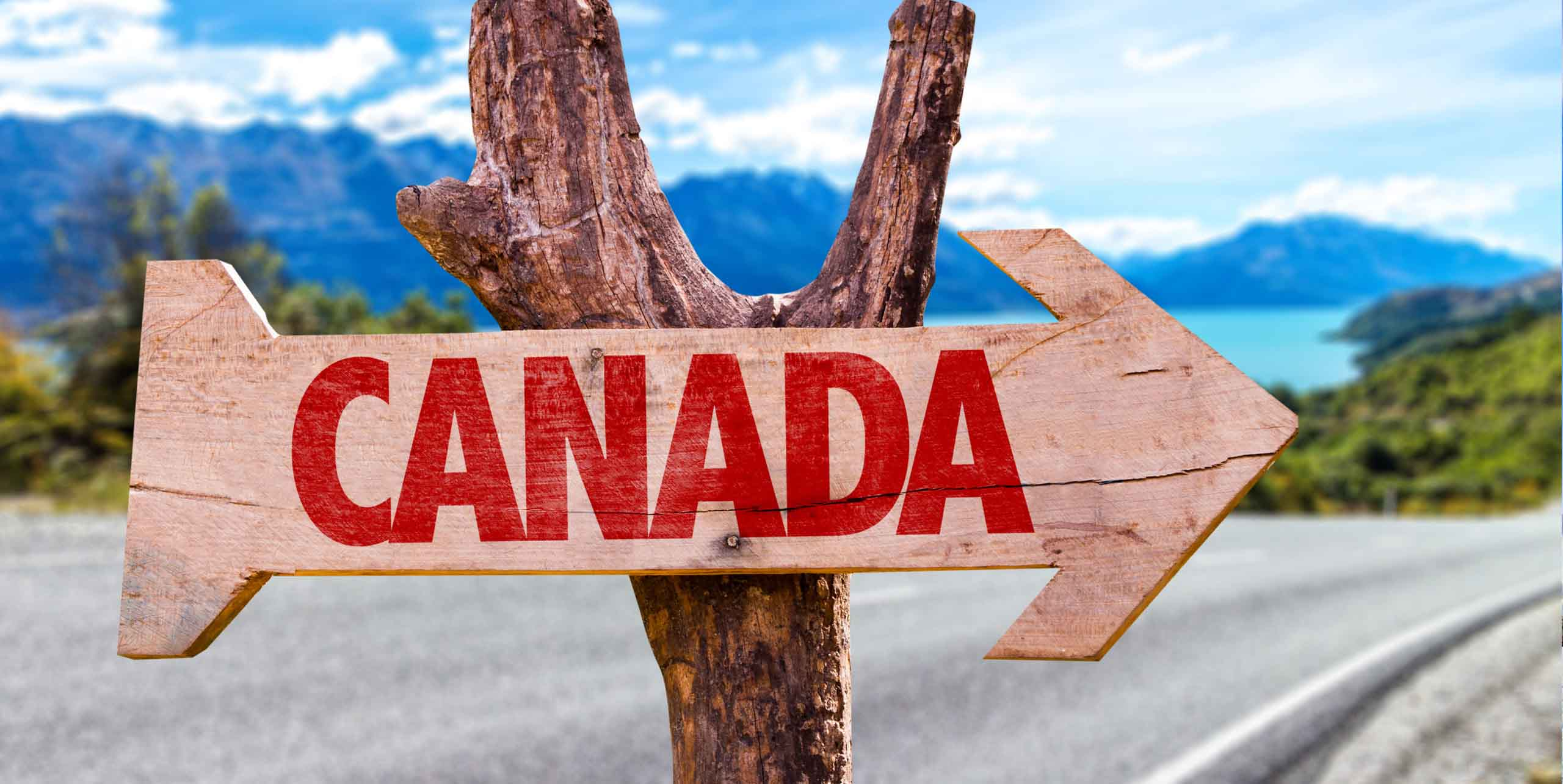 Canada immigration consultants in Canada